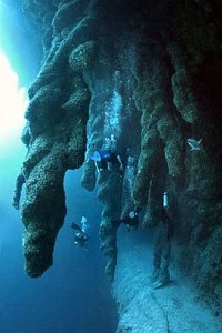 Great-Blue-Hole-Delize-8