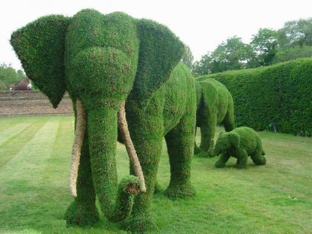 miscellaneous-strong.blogspot._com_2010_07_beautiful-moss-art-and-grass-art._html-630x472