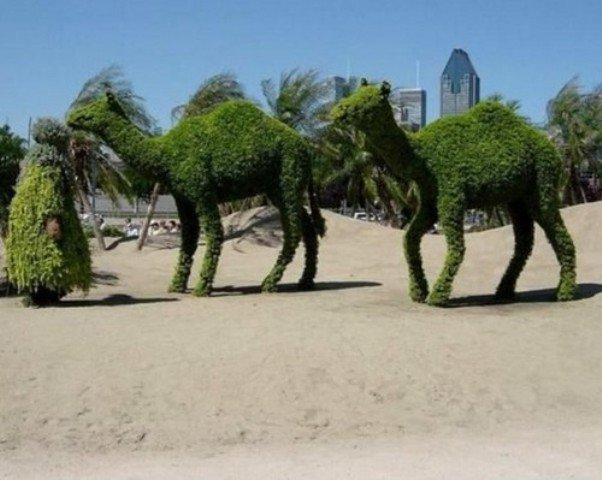 nunu.in_pictures-images_amazing-pictures-pictures-images_172_most-creative-grass-sculpture-pictures_