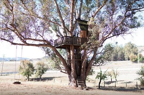 Տուն ծառի գագաթին